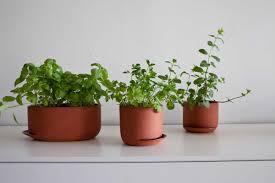 indoor gardening project by anderssen u0026 voll
