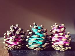 Decorating Pine Cones With Glitter How To Make Glitter Pinecones Hometalk