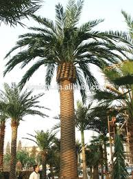 artificial palm tree indoor decoration house hotel plastic palm