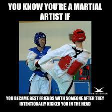 Martial Arts Memes - how to make friends martialartsmemes com