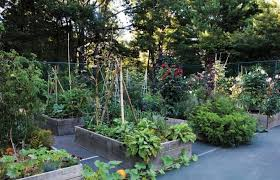 Backyard Tennis Courts Steal This Look An Old Tennis Court Turned Kitchen Garden