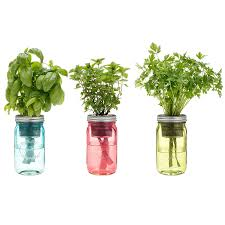 amazon com kitchen herb kit three self watering indoor