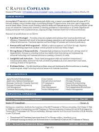 Cto Resume Example by Cto Resume Sample Outstanding Cto Resume For Professionals How To