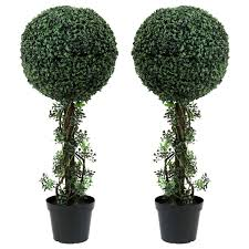 topiary trees charles bentley pair of 3ft boxwood buxus topiary