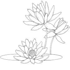dibujos flores colorear dibujos pintar flores