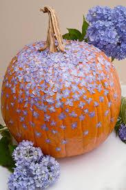 best 25 cinderella pumpkin carriage ideas on pinterest pumpkin