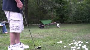 chipping practice in the backyard youtube