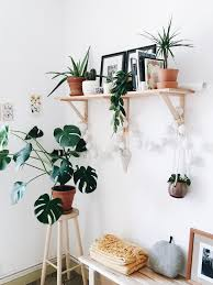 Home Shelving Best 25 Plant Shelves Ideas On Pinterest Bathroom Ladder Shelf