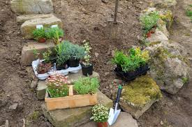Creating A Rock Garden A Pop Up Chat Tour Creating Rock Gardens With Drought Tolerant