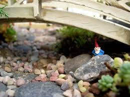 inspiration from adversity miniature gardening on pinterest