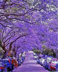 7 best blue images on pinterest beautiful places amazing