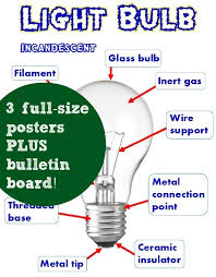 parts of a light bulb electricity light bulbs posters bulletin classroom caboodle