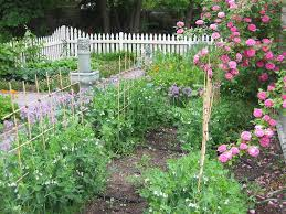 Gardening Picture Information About Colonial Gardens U2013 How To Grow A Colonial
