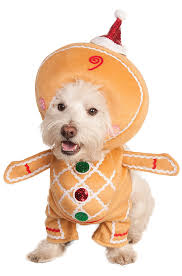 pet costumes cute pet halloween costume ideas purecostumes com