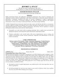 Quantitative Analyst Resume Investment Banking Business Analyst Sample Resume 2 Sample Ba