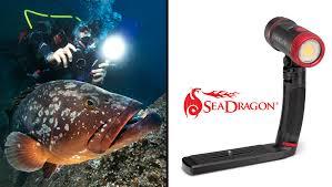 sea dragon 2500 photo video dive light sealife sea dragon 2500 photo video light r sub