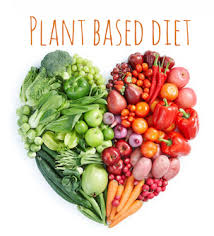 plant based diets and diabetes what you should know