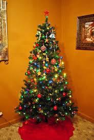 best christmas tree best christmas tree learntoride co