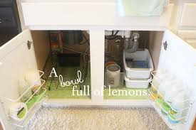 Organizing Under Kitchen Sink by Organizing Under The Kitchen Sink U2026 A Bowl Full Of Lemons
