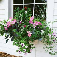 Container Flower Gardening Ideas Container Gardening Ideas Are Anywhere To Be Found Resolve40