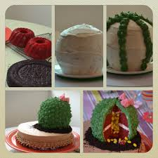 the sugary shrink cactus cake sitting in the desert dessert