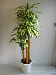 artificial plants valencia rakuten global market artificial plants happiness tree