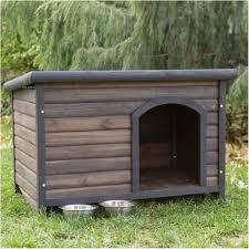 backyards winsome kennel and raised garden 52 backyard