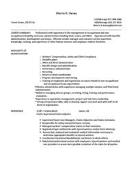Ladybug Resume Sports Administration Sample Resume Ladybug Simple Checklist