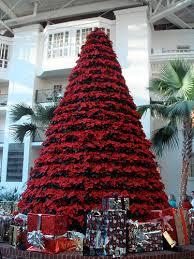 poinsettia tree 4 ways to extend your poinsettia installation to new year s