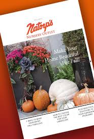 Coupons For Home Design Outlet Center Home Natorps