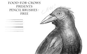 pencil brushes free by food for crows on deviantart