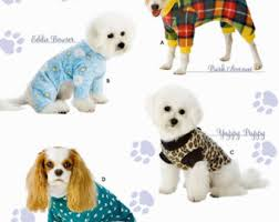 white china pattern 3939 dog coat pattern etsy