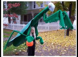 Ridiculous Halloween Costumes Strangest Kids U0027 Halloween Costumes
