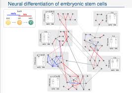 theoretical systems biology at imperial college london