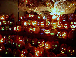 halloween pumpkins lined up so funny u2013 thefunnyplace