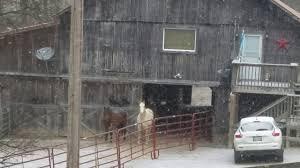 bair necessities snow day at bair necessities farm