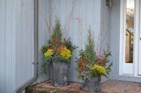 Winter Container Garden Ideas Conifer Container Garden Ideas Hgtv