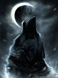 what is your spirt wolf moon and