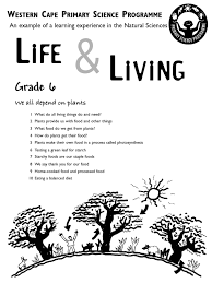 life and living grade 6 english photosynthesis staple foods