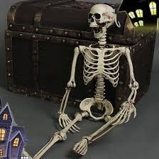 realistic skeleton halloween decor scary skull man bone creepy