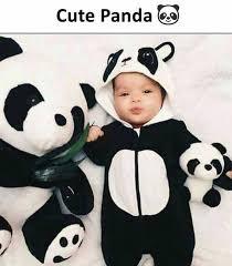 dopl3r com memes cute panda es