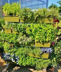 Vertical Gardens Miami - 22 best vertical and container gardens images on pinterest
