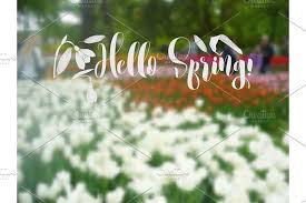 background with spring garden flowers illustrations creative