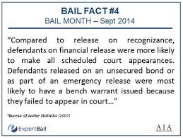 bail bureau today s bail fact comes from a sector research study