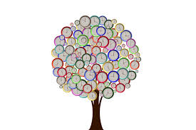 free illustration tree watches time hours minutes free