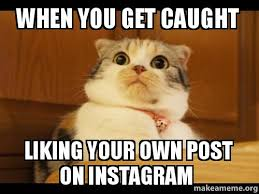 Like Your Own Post Meme - when you get caught liking your own post on instagram make a meme