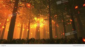deep forest fairy tale scene fireflies 3d render stock animation