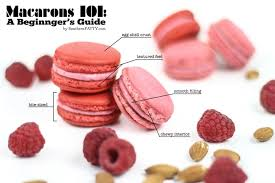 macarons 101 a beginner u0027s guide and printable piping template
