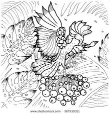 tropical bird coloring pages 28 images tropical bird coloring