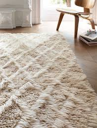 Plush Area Rugs Awesome Best 25 Shag Rugs Ideas On Pinterest Rug Rag Diy And For